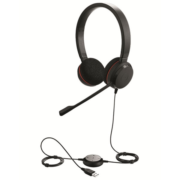 Jabra Evolve 20 Headset Duo USB